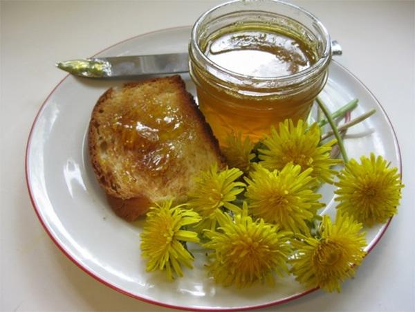 cvety-oduvanchika-2