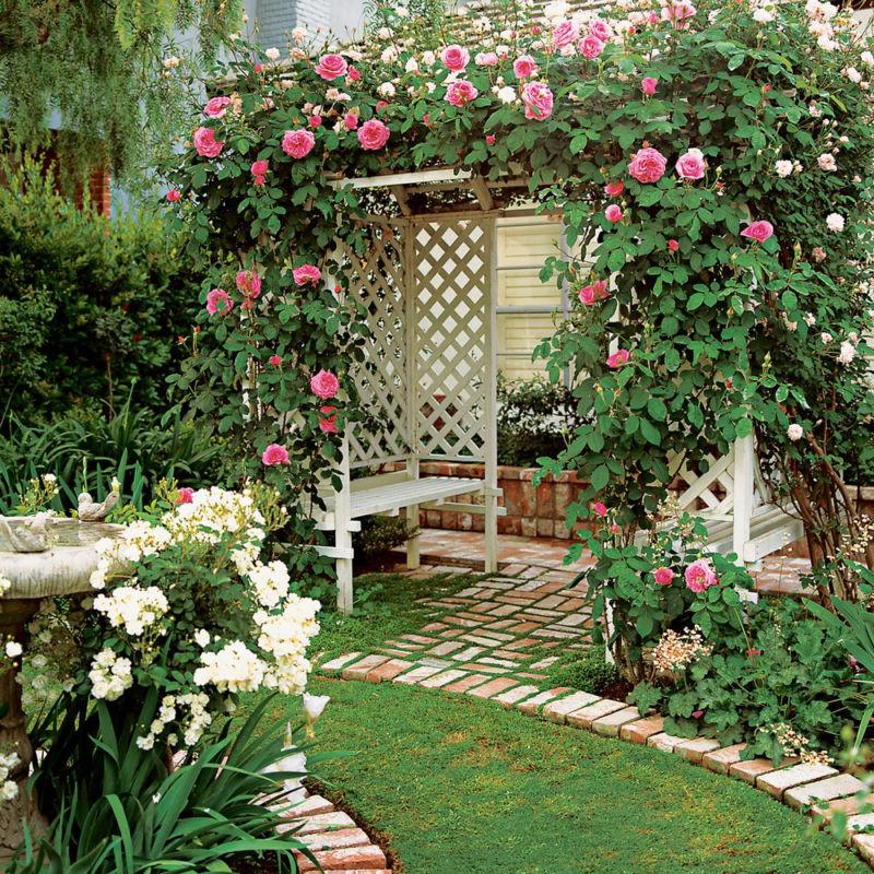 Какие цветы посадить около беседки с